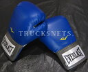 【EVERLAST エバーラスト】ボクシンググローブ (青色)16オンス