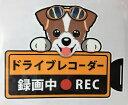 【20%OFF11日1_59まで】犬 ジャックラッセル ドライブレコーダー録画中 犬種別外張りステッカー(ジャックラッセルテリア1)ドラレコ ステッカー ドッグ 犬 いぬ 車 オーナーグッズ あおり運転 迷惑防止 雑貨 ジャック