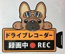 ショッピングドライブレコーダー ドライブレコーダー録画中 犬種別外張りステッカー(フレンチブルドッグ1)ドラレコ ステッカー ドッグ 犬 イヌ いぬ 車 オーナーグッズ あおり運転 迷惑防止 雑貨 フレブル