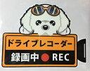 ショッピングドライブレコーダー ドライブレコーダー録画中・犬種別外張りステッカー(マルチーズ1)ドラレコ ステッカー ドッグ 犬 イヌ いぬ 車 オーナーグッズ あおり運転 迷惑防止