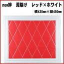 New-kizuna-r-430-450