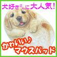 かわいい犬型マウスパッド デニー [ヘンリーキャットHenryCats&Friends]【DM便(旧メール便)・ネコポス・ゆうパケット対応】【RCP】【はこぽす対応商品】【コンビニ受取対応商品】【wsp10x】 532P15May16