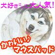 かわいい犬型マウスパッド ベン シベリアンハスキー[ヘンリーキャットHenryCats]【DM便(旧メール便)・ネコポス・ゆうパケット対応】【RCP】【はこぽす対応商品】【コンビニ受取対応商品】【wsp10x】 532P15May16