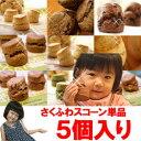 【宅配便】【さくふわスコーン】スコーン単品5個セット