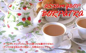 インド紅茶:2017年アッサムセカンドフラッシュ・ボルパトラ茶園クオリティーGBOP(500g)業務用パック【送料無料:宅配便】