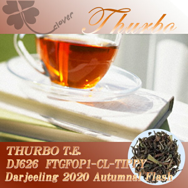 【メール便:送料無料】インド紅茶:2017年ダージリンオータムナル秋摘タルボ茶園 DJ-1019 FTGFOP1(50g)