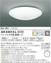 ★AH43013L 【当店おすすめ!お買得品】 コイズミ照明...