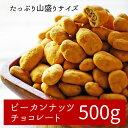 大容量ピーカンナッツ一度食べたら止まらない!ピーカンナッツをたっぷり堪能!