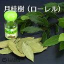 【楽天スーパーSALE 超特価!】月桂樹(ローレル) 9cmポット苗 05P03Dec16