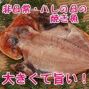 刺し網漁特選 金目鯛 [ キンメダイ ]