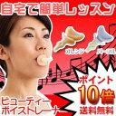 【カラオケ】 ビューティボイストレーナー 歌唱力に自信の無い方は是非お試し下さい!【発声練習 ボイス