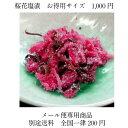 【メール便】桜花塩漬お得サイズ お手軽単品メール便 (花房およそ70枚から75枚)