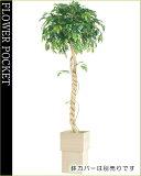 大幅割引!【】人工樹木(光触媒加工)フィッカスベンジャミナシングル高さ1.8m(ケ9)