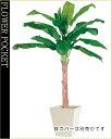 大幅割引!【送料無料】人工樹木(CT触媒加工)バナナ高さ1.8m(ケ9)