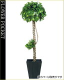 大幅割引!【】人工樹木(光触媒加工)フィッカスベンジャミナダブル高さ1.8m(ケ9)