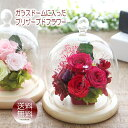 花 ギフト 送料無料【木の温もり♪シャーロット ガラスドーム...