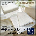 LOHATEX ラテックスシート(厚さ2...