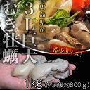 広島県産 3Lサイズ 巨大牡蠣 1kg (加熱用) ※冷凍 ...