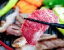 最上級ランクA5限定 松阪牛 厚切りカルビ 500g ※冷凍 送料無料