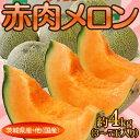 茨城県産・他『赤肉メロン』3〜7玉 約4kg frt ○