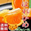 《送料無料》愛媛県産「はれひめ」 約5キロ(L〜3L) frt ☆