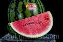 《送料無料》新潟県産「八色西瓜(やいろすいか)」 Lサイズ 2玉 合計約13kg 秀品 frt