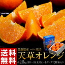 《送料無料》佐賀産 ハウス「天草オレンジ」M〜L 10〜18玉 約2.5キロ frt ☆