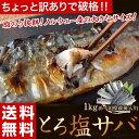 ≪送料無料≫ちょいキズ ノルウェー産 とろ塩サバ 1kg(6枚〜10枚前後) ※冷凍 sea☆