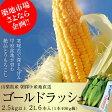 『ゴールドラッシュ』 山梨産 2Lサイズ 2.5kg以上(6本入り)※冷蔵 ☆