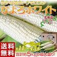 《送料無料》 北海道名寄産 「なよろホワイト」 L〜2Lサイズ 約5kg(11〜13本) ※冷蔵 ○
