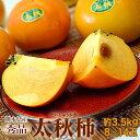 《送料無料》熊本県産「太秋柿」 産地箱 秀品 8〜14玉 約3.5キロ frt ○