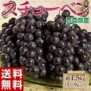 《送料無料》青森県産 黒ぶどう「スチューベン」5?9房 約1.5kg frt ○