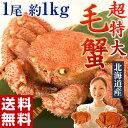 ≪送料無料≫北海道産 超特大「毛蟹」1尾×約1kg ※冷凍 sea ☆