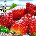 茨城県産 『村田さん家のいちご』 約250g×4パック(イチゴ/苺) ※冷蔵 frt ○