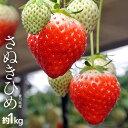 香川県産 さぬきひめイチゴ 約1kg(目安として25〜42粒) ※冷蔵 frt ☆
