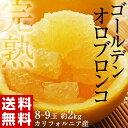 《送料無料》カリフォルニア産 完熟ゴールデンオロブロンコ 8〜9玉 約2kg frt ☆