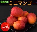 マンゴー 宮崎県産 ミニマンゴー 約400g 目安として3〜20玉 送料無料