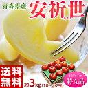 りんご 送料無料 青森県産 安祈世(あきよ)10〜12玉 約3kg【特A】