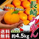 《送料無料》大玉手詰め『長崎みかん』 2〜3L 約4.5kg...