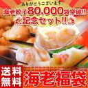 福袋 食品 海老福袋 海老餃子50個+海老春巻12本+海老フライ160g+海老焼売8個 えび