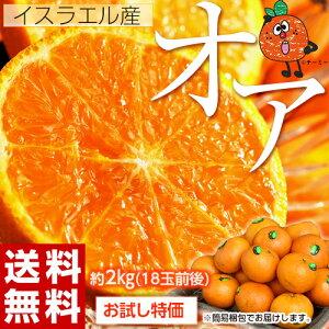 神秘の柑橘 オアオレンジ イスラエル産 約2kg(14〜20玉前後) 送料無料 frt ☆ オア オアオレンジ OR オラ オレンジ