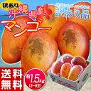 《送料無料》訳有り『沖縄産マンゴー』 大ボリュームの約1.5kg(3?6玉)※常温 frt ☆ 訳あり マンゴー 沖縄 まんごー おきなわ 沖縄県 トロピカル 大ボリューム 大容量 たっぷり