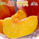 送料無料 山形県産「高嶋さんグループの紅い黄桃」無袋黄桃 約2kg(5〜10玉)