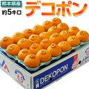 柑橘 みかん 糖度13度選別 熊本県産 デコポン 約5kg ...