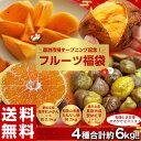 送料無料!豊洲市場開場記念「フルーツ福袋 合計約6kg」みかん・種なし柿・安納紅芋・