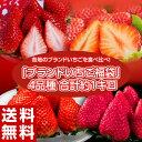 いちご イチゴ 苺 「ブランドいちご福袋」 4品種 合計約1...