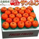 りんご リンゴ 林檎 青森県産 小玉 訳ありサンふじ 約5kg(23〜25玉)送料無料