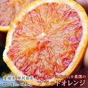 柑橘 フルーツ 愛媛 ごご島産 池本ゆたか農園のブラッドオレンジ(タロッコ)SS〜S 約2.5キロ 送料無料