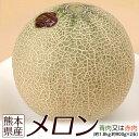 熊本県産 メロン(青肉又は赤肉) 大玉2Lサイズ 2玉セット 約1.8kg(900g前後×2玉)