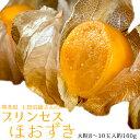 上田岩雄さんのプリンセスほおずき ホオズキ 鬼灯 熊本県産 大粒8〜10粒 約160g 常温 産地直送
